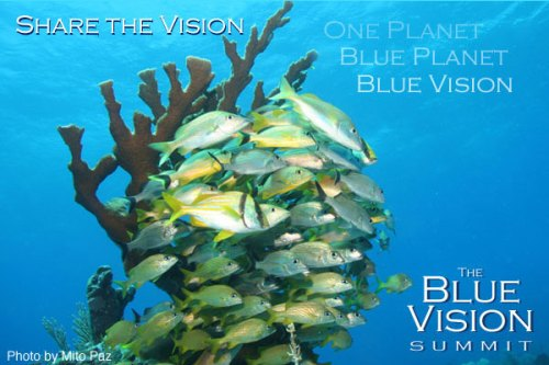 blue-vision-summit