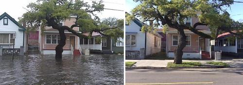 A 24 hour difference on Fishburne Street